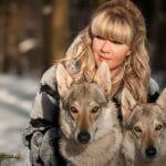 Волки и люди: учёные ищут рецепт добрососедства