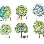 Тест: Выберите дерево и узнайте, куда лежит ваш жизненный путь.