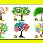 Тест: Узнайте для себя чего вам не хватает в вашей жизни с помощью дерева.