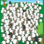 Тест: Найдите на иллюстрации овечку которая спит.