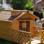 Собака прожила на стройке больше трёх лет, после сдачи дома, строитель забрал её к себе, и построил ей дом.