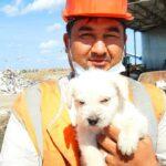 Работники сортировочного цеха обнаружили среди мусора щенка, которого кто-то оставил на свалке.