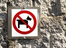 Домашние животные, запрещенные во всем мире