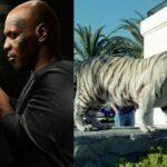 Майк Тайсон и его необычные домашние животные